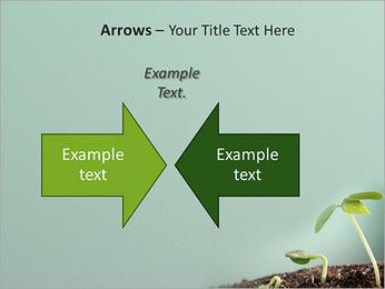 Plante dans le sol Modèles des présentations  PowerPoint - Diapositives 70