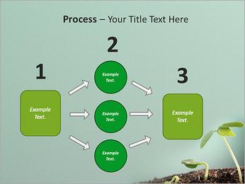 Plante dans le sol Modèles des présentations  PowerPoint - Diapositives 72