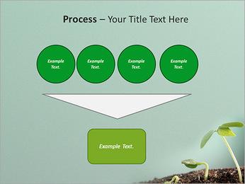 Plante dans le sol Modèles des présentations  PowerPoint - Diapositives 73