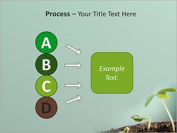 Plante dans le sol Modèles des présentations  PowerPoint - Diapositives 74