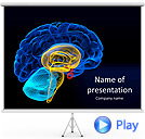 Brain Animated PowerPoint Templates
