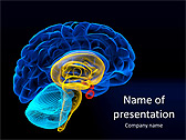 Brain Animated PowerPoint Template - Slide 1