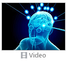 Human Intellect Video