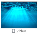 Light Under Water Videos
