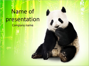 Panda PowerPoint Template - Slide 1