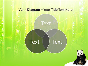 Panda PowerPoint Template - Slide 13