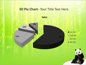 Panda PowerPoint Template - Slide 15