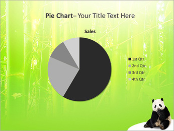 Panda PowerPoint Template - Slide 16