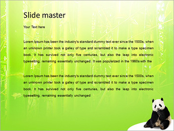 Panda PowerPoint Template - Slide 2