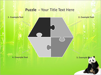 Panda PowerPoint Template - Slide 20