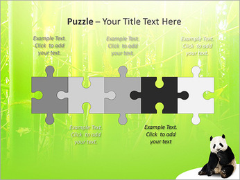 Panda PowerPoint Template - Slide 21