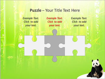 Panda PowerPoint Template - Slide 22