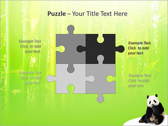 Panda PowerPoint Template - Slide 23