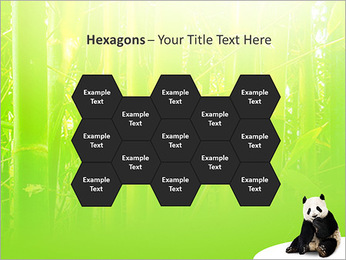 Panda PowerPoint Template - Slide 24