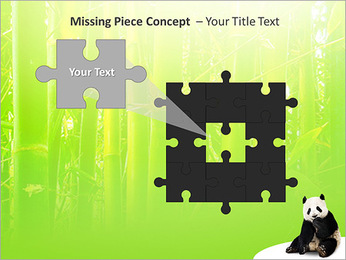Panda PowerPoint Template - Slide 25
