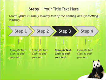 Panda PowerPoint Template - Slide 4