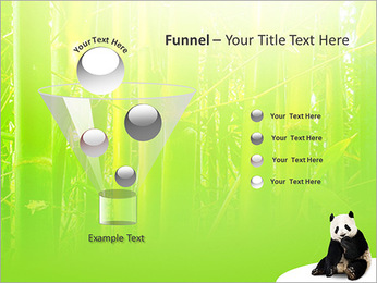 Panda PowerPoint Template - Slide 43