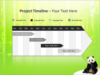 Panda PowerPoint Template - Slide 5