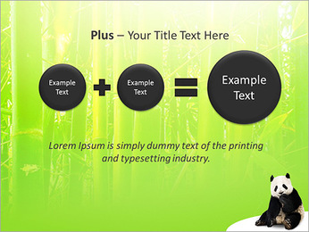Panda PowerPoint Template - Slide 55