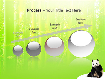 Panda PowerPoint Template - Slide 67