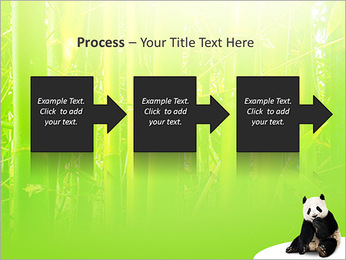 Panda PowerPoint Template - Slide 68