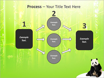 Panda PowerPoint Template - Slide 72