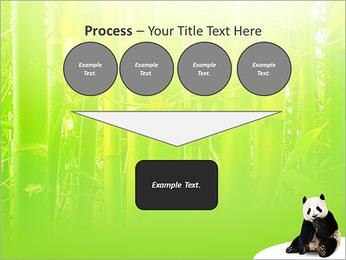 Panda PowerPoint Template - Slide 73