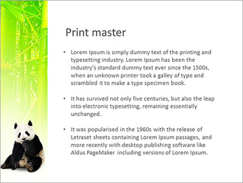 Panda PowerPoint Template - Slide 76
