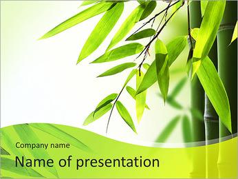 Les feuilles vertes Modèles des présentations  PowerPoint