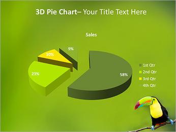Toucan Bird PowerPoint Template - Slide 15