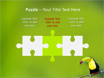 Toucan Bird PowerPoint Template - Slide 22