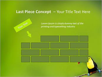Toucan Bird PowerPoint Template - Slide 26
