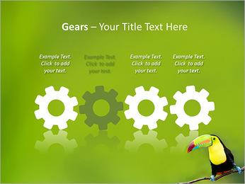 Toucan Bird PowerPoint Template - Slide 28