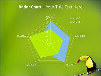 Toucan Bird PowerPoint Template - Slide 31