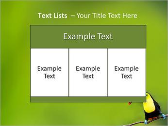 Toucan Bird PowerPoint Template - Slide 39