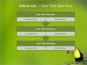 Toucan Bird PowerPoint Template - Slide 40
