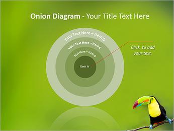 Toucan Bird PowerPoint Template - Slide 41