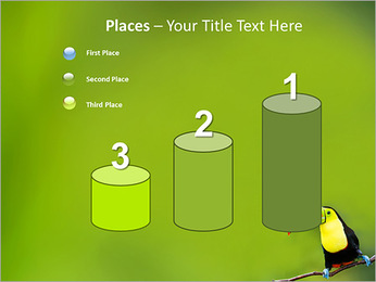 Toucan Bird PowerPoint Template - Slide 45