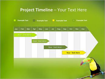 Toucan Bird PowerPoint Template - Slide 5