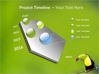 Toucan Bird PowerPoint Template - Slide 6