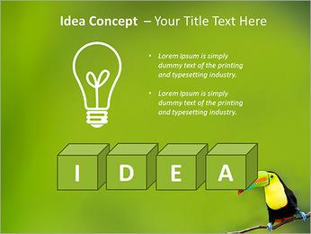 Toucan Bird PowerPoint Template - Slide 60