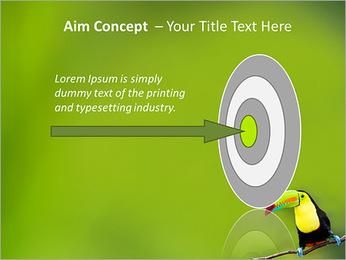Toucan Bird PowerPoint Template - Slide 63