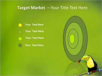 Toucan Bird PowerPoint Template - Slide 64