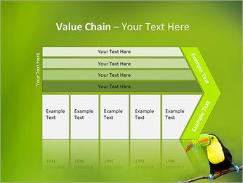 Toucan Bird PowerPoint Template - Slide 7