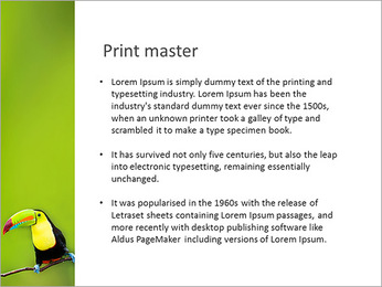 Toucan Bird PowerPoint Template - Slide 76