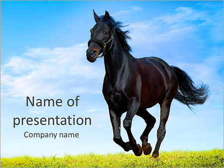 Black Horse Powerpoint Template Backgrounds Google Slides Id
