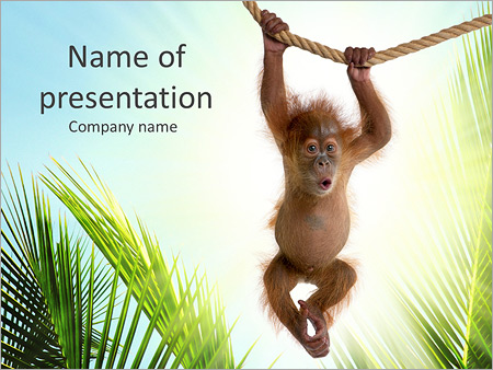 Small gorilla powerpoint template backgrounds id 0000005334 small gorilla powerpoint templates toneelgroepblik Images