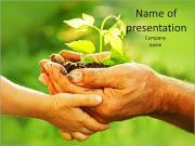 Plante dans la main Modèles des présentations  PowerPoint