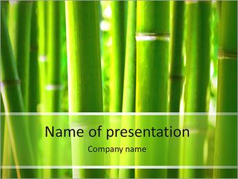 Bambou Modèles des présentations  PowerPoint