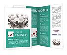 Management Discussion Brochure Templates